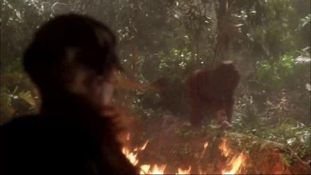 《刚果惊魂》  火山爆发山塌地陷 母猩猩勇救男子