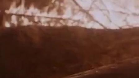 默默的小理河 老爷爷砸倒陈宝国 助游击队打胜仗 CUT 10 竖版