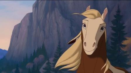 小马精灵 善良男孩做抉择 将小野马放回野外 CUT 8