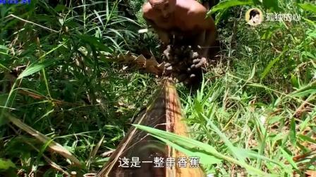 荒野求生: 德哥在森林弄到大宝贝, 刚下飞机就吃的那么丰富
