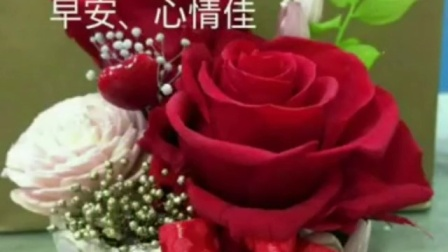 QQ视频_51CC49DABC5785591A54142BBF2827BB朋友们早上好记得吃早餐哦云南省新闻视频发布