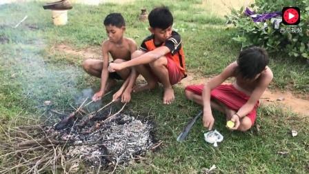 柬埔寨水肥鱼多,三个男孩田里抓得两大条鲶鱼就地烧烤