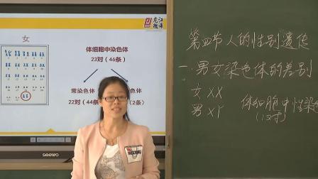 初中生物人教版八下《7.2 人的性別遺傳》黑龍江郭琳