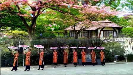 旗袍队形舞 江南雨
