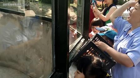 奶妈喂喜乐胡萝卜, 小朋友讨论喜乐: 她为什么不上幼儿园呢