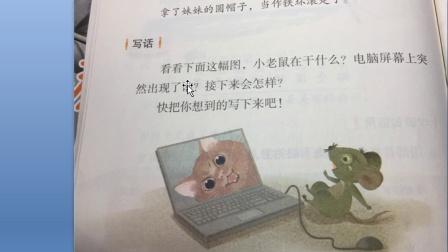 二年级看图写话老鼠和猫