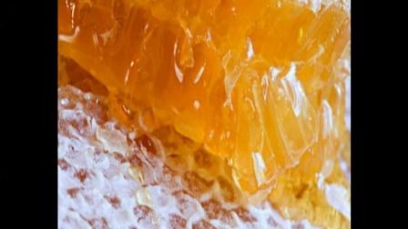 蜂蜜解酒的最快方法是什么