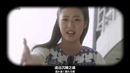 欧布奥特曼MV 歌曲《True Fighter》日语版 (星光璀璨之时 勤奋的wq 合作作品)