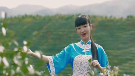 茶山姑娘(葫芦丝演奏:刘亚琴)