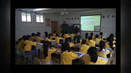 湘美教版小学一年级美术下册16.变色龙-季老师(配视频课件教案)