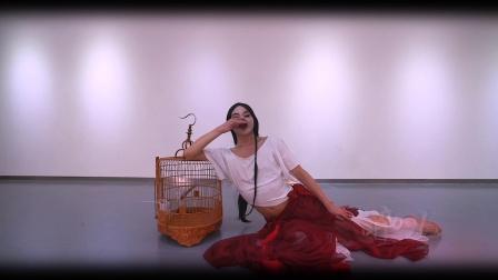 一月常规新舞【醉儿】【迷迭香 】   孙科舞蹈工作室