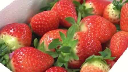 西点烘焙教程少女心爆表之双层草莓奶油蛋糕_标清jz0奶油裱花