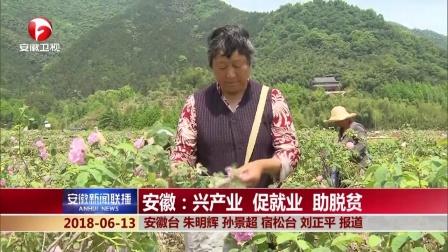安徽新闻联播 2018 安徽:兴产业 促就业 助脱贫
