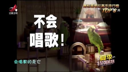萌宠界的歌王!鹦鹉唱歌飙高音,五音不全的我输了!