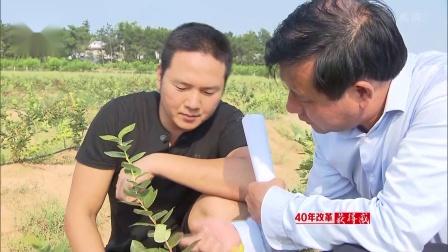 """安徽新闻联播 2018 省边防总队推出3项""""不跑腿""""便民新举措"""