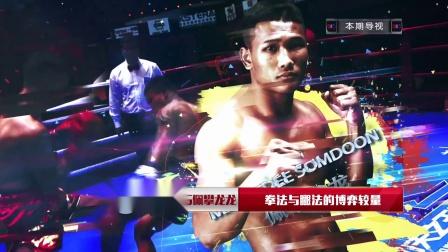 世界功夫之王争霸赛-陈红兴VS佩攀龙龙:拳法与腿法的博弈较量