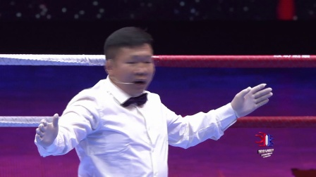 世界功夫之王争霸赛-刘大成VS谭小峰:把握距离才能致胜