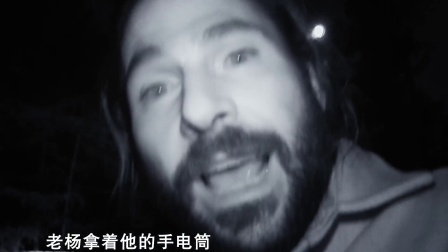 半夜营地入侵捕食者,老杨竟然用鞭炮吓走了黑熊