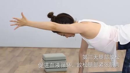 放松修复瑜伽预览片