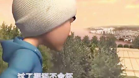 伙头智多星片头曲 (罗嘉良 吴镇宇 张卫健 许志安 张茜 万梓良版)