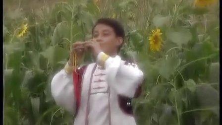 姑娘生来爱唱歌-葫芦丝