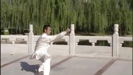 陈式太极拳全套动作正面演练