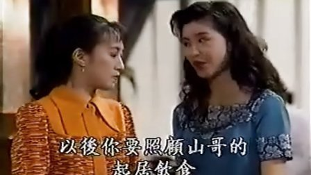 银狐15 国语VCD