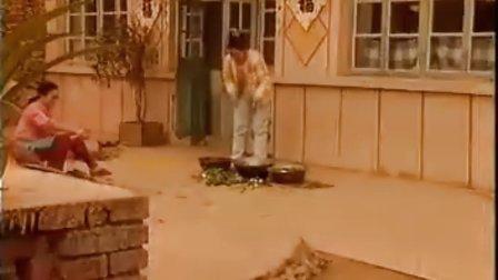 篱笆女人和狗009