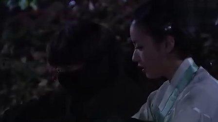 韩剧 一枝梅11 清晰版