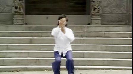 中國武術名拳錄-陳氏太極拳老架 1