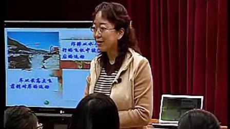 高一物理优质课展示《平抛物体的运动》