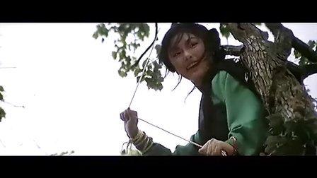 新金瓶梅 香港《蝶变》DVD国语