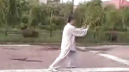 传统杨式太极拳85势