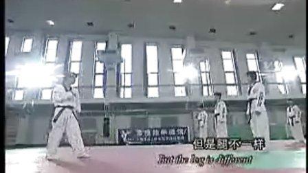 【侯韧杰 TKD 教学篇】之崔永福跆拳道6