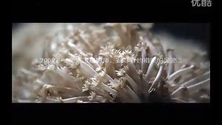 广西北海旅游片