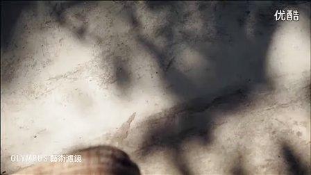 2011 杨丞琳 OLYMPUS E-PM1广告