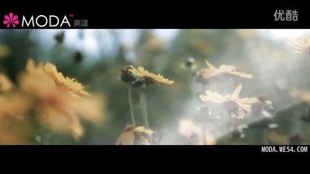 《美丽永恒》-----纪录美达2011