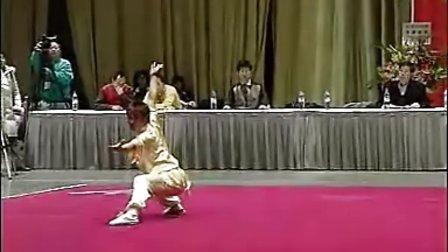 第二届香港国际武术节名家表演 ( 二)