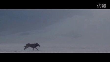 David Guetta - She Wolf Ft. Sia