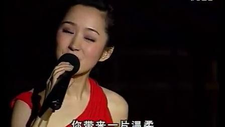 杨钰莹-你带来一片温柔 2002年北京演唱会