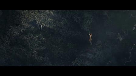 【舍长制造】白狼再临—巫师3:狂猎 试玩