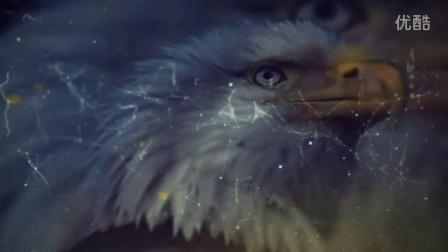 晨练--低耍盘鹰