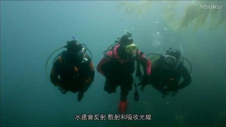 开放水域潜水员教程 第二单元 理论 I
