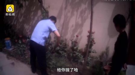 民警铲除清点罂粟,农妇阻拦