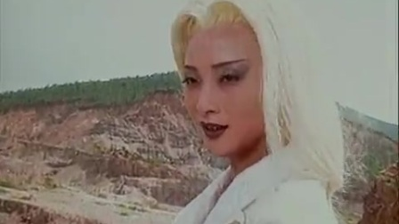白发侠女17