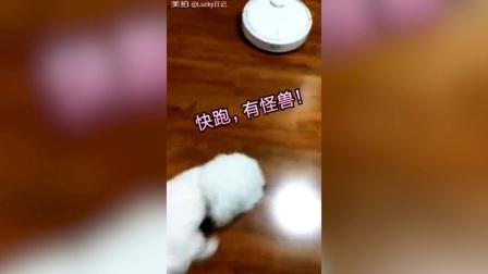 家里有一台米家扫地机器人是一种什么样的体验
