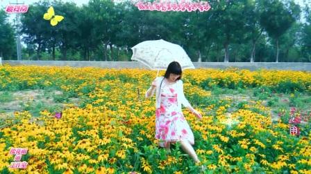 创意音乐视频《万物生》百花丛中的唯美伊人~浪漫~温馨(64部)
