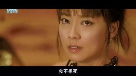 【蔡卓妍·吴京·洪金宝·元华电影】双子神偷 国语中字·HD·高清版