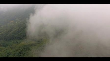 (特辑)800m高空美丽云海--走进醉美华林#大美江西,醉美华林#