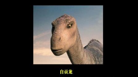 湖南株洲恐龙化石纪录片